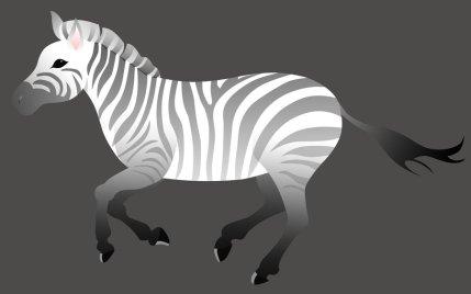 zebre noir et blanc